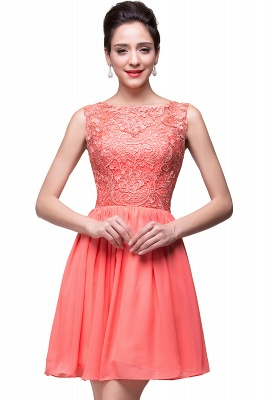 Lovely Illusion Sleeveless Chiffon Short Cocktail Dress With Lace_1