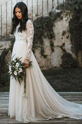 Elegant Long Sleeves Tulle Lace Appliques Wedding Dress Aline Garden Bridal Dress_1