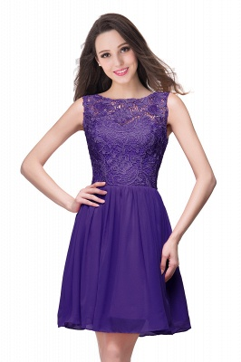 Lovely Illusion Sleeveless Chiffon Short Cocktail Dress With Lace_4