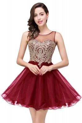 Sleeveless Appliques 2020 Sexy Black Tulle Homecoming Dress_1