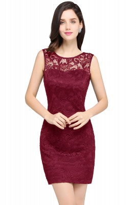 Back-Zipper Sheath-Column Lace Short-Mini Scoop-neckline Cocktail Dress_1