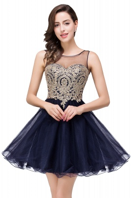 Sleeveless Appliques 2020 Sexy Black Tulle Homecoming Dress_5