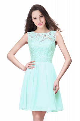 Lovely Illusion Sleeveless Chiffon Short Cocktail Dress With Lace_10