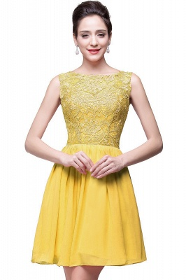 Lovely Illusion Sleeveless Chiffon Short Cocktail Dress With Lace_3