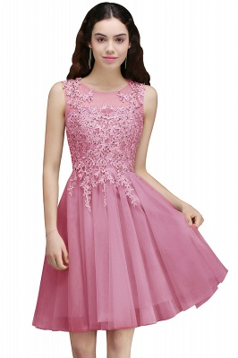 Silver Tulle Short A-Line Sleeveless Appliques Homecoming Dress_1