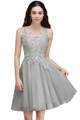 Silver Tulle Short A-Line Sleeveless Appliques Homecoming Dress_2