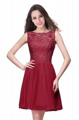 Lovely Illusion Sleeveless Chiffon Short Cocktail Dress With Lace_2