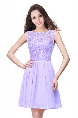Lovely Illusion Sleeveless Chiffon Short Cocktail Dress With Lace_5