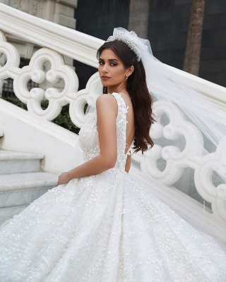 V-Neck Floral Lace Appliques Tulle Ball  Gowns Backless Wedding Dress_3