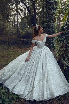 Elegant Off Shoulder  A-line Ball Gowns Lace Appliques Bridal Gowns
