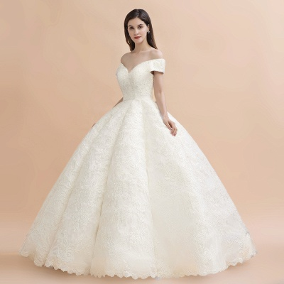 Elegant Ivory Off-the-Shoulder Lace Appliques Ball Gowns_6