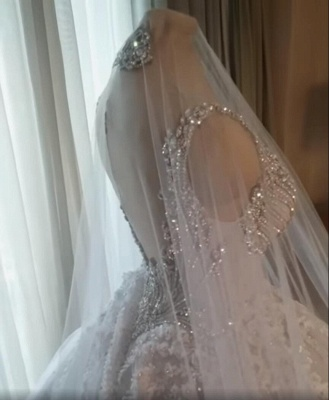 Luxury Crystals Ball Gown Wedding Dresses   V-Neck Sleeveless Lace Bridal Gowns_2