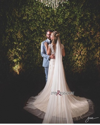 Lace tulle wedding dress, princess bridal gowns 2020_1