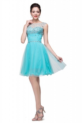 Classic Sleeveless Tulle Short Homecoming Dress With Crystals_2