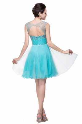 Classic Sleeveless Tulle Short Homecoming Dress With Crystals_5
