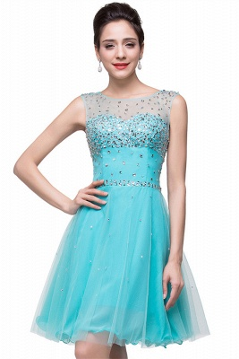 Classic Sleeveless Tulle Short Homecoming Dress With Crystals_1