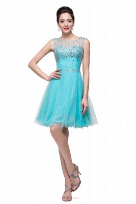 Classic Sleeveless Tulle Short Homecoming Dress With Crystals_3