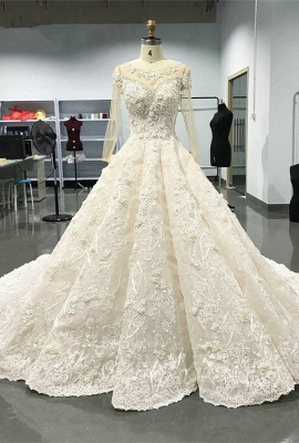 Luxury Long Sleeve Lace Wedding Dresses | 2020 Lace Designer Bridal Gowns_1