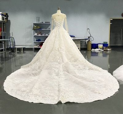 Luxury Long Sleeve Lace Wedding Dresses | 2020 Lace Designer Bridal Gowns_2