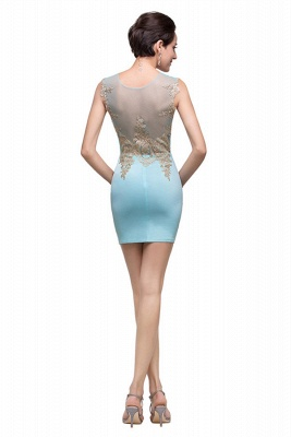 Elegant Sleeveless Short Homecoming Dress With Golden Appliques_3