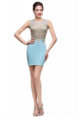 Elegant Sleeveless Short Homecoming Dress With Golden Appliques_2