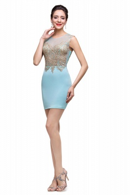 Elegant Sleeveless Short Homecoming Dress With Golden Appliques_6