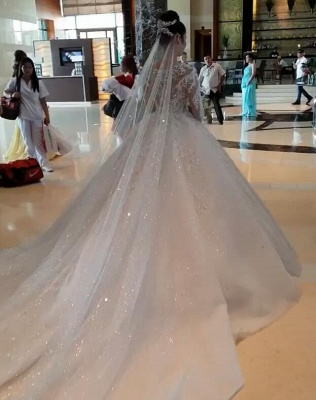 Glamorous Long Sleeve 2020 Ball Gown Wedding Dresses | Lace Appliques Tulle Bridal Gown BC0895_3