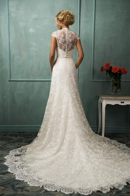 Elegant Cap Sleeve Lace Wedding Dress With Zipper Button Bridal Gowns_2