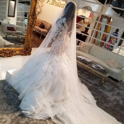 Mermaid Lace Appliques Tulle Wedding Dress Delicate Bridal Gowns_4