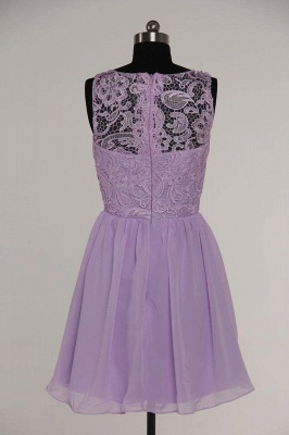 Lovely Illusion Sleeveless Chiffon Short Cocktail Dress With Lace_12