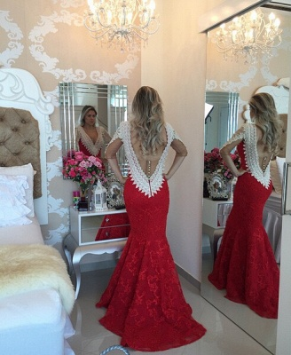Modern V-neck Lace Mermaid Prom Dress 2020 Half Sleeve Zipper NB089_2