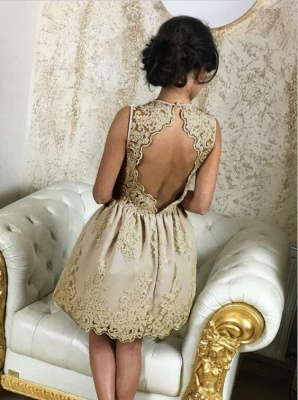 Lovely Lace Appliques 2020 Short Homecoming Dress On Sale_4