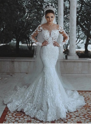 Glamorous Long Sleeve Lace Wedding Dress | 2020 Mermaid Bridal Gowns On Sale_1
