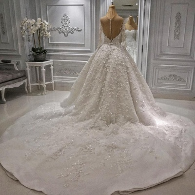 Charming Long Sleeve Lace Appliques Bridal Gowns | 2020 Ball Gown Wedding Dress With Zipper Button Back_3