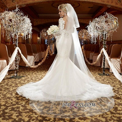 2020 lace Mermaid Zipper Long-Sleeve Gorgeous Wedding Dress_1