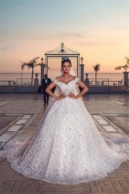 Chic Appliques Off Shoulder Wedding Dresses Sweep Train Sleeveless Bridal Gowns_1