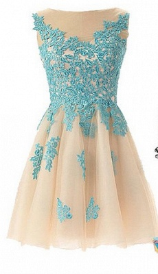 Lovely Illusion Cap Sleeve Short Homecoming Dress With Lace Appliques_1