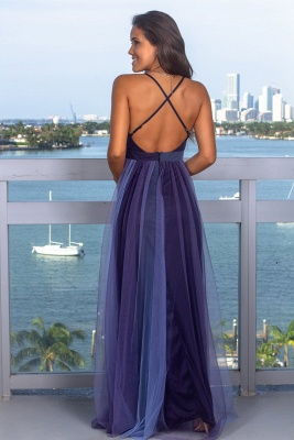 Sexy Sleeveless Deep V-Neck Evening Gowns   Criss Cross Strings Tulle Prom Dress With Zipper BC1370_4