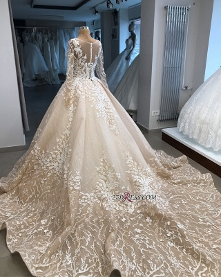 Long-Sleeves Appliques Scoop Brilliant Ball-Gown Wedding Dresses_2