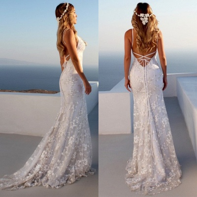 Glamorous Spaghetti Strap Sleeveless Lace Appliques Prom Dress   Mermaid Criss Cross Strings Evening Gowns BC0489_5