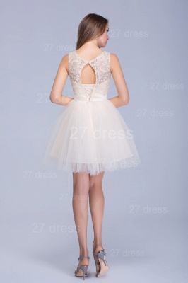 Modern Illusion Sleeveless Tulle Homecoming Dress With Lace Bowknot_5