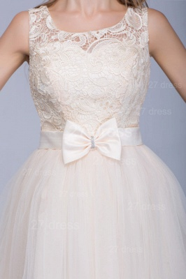Modern Illusion Sleeveless Tulle Homecoming Dress With Lace Bowknot_4