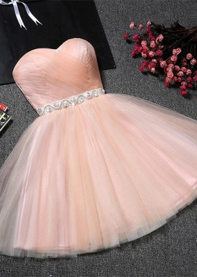 Lovely Sweetheart Prom Dress | 2020 Tulle Lace-Up Short Homecoming Dress_1
