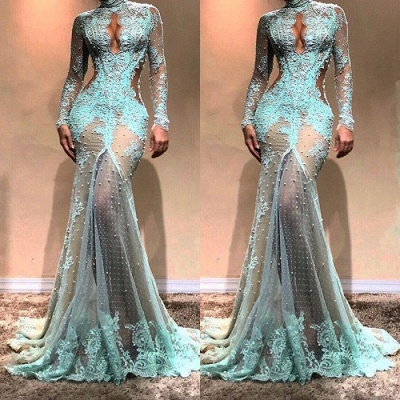 Gorgeous Long Sleeve Mermaid Evening Dress | 2020 Lace Formal Dress BC0003_3