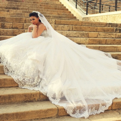 Delicate Sweetheart Lace Tulle Wedding Dress Ball Gown Beadings_3