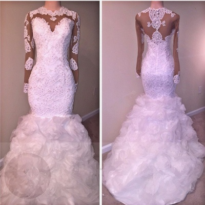 Delicate Long Sleeve Lace Appliques Wedding Dress | 2020 Mermaid Bridal Gown_2
