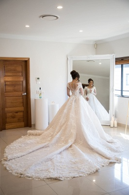 Exquisite Appliques Sheer Tulle Bridal Gowns Long Sleeve A-line Wedding Dress_2