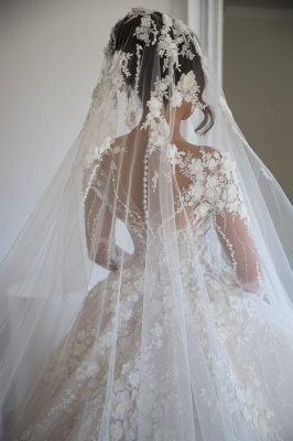 Exquisite Appliques Sheer Tulle Bridal Gowns Long Sleeve A-line Wedding Dress_4