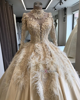 Feathers Ball-Gown Appliques Long-Sleeves High-Neck Attractive Wedding Dresses_3