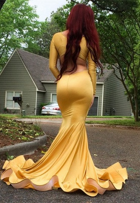 Gorgeous Yellow Long Sleeve Prom Dress | 2020 Mermaid Evening Gowns_2